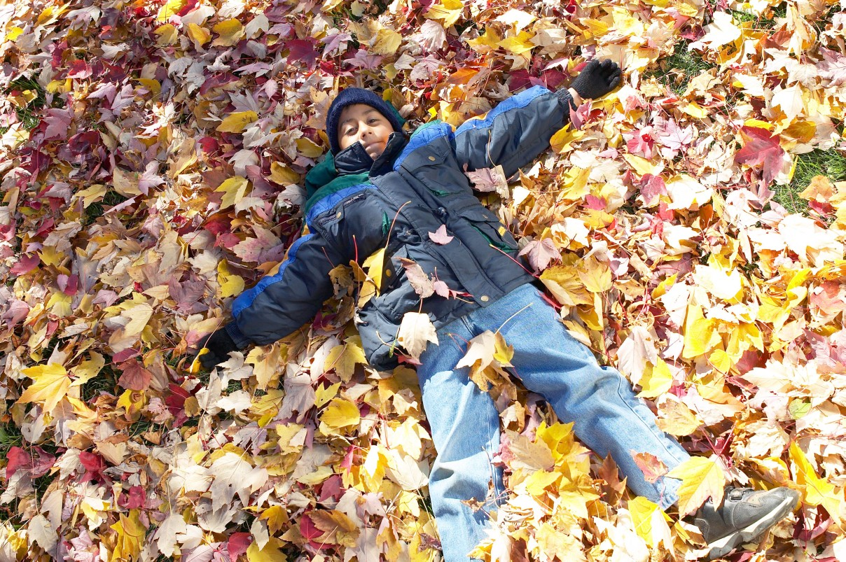 youth in fall leaves