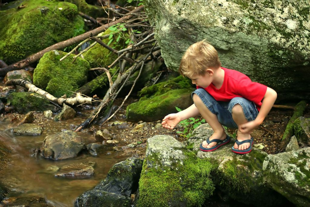 boy discovering stream